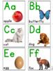 {Flash Freebie} Alphabet Photo Flash Cards
