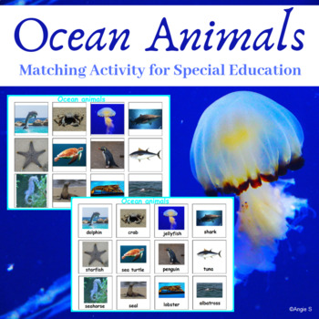 Ocean Animals Matching Activity