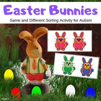 Same and Different Sorting Activity for Easter