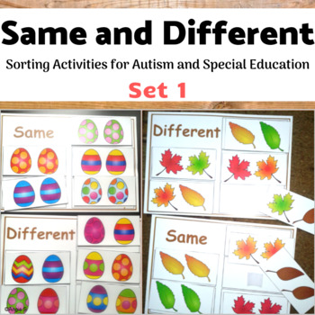 Same or Different Sorting Bundle for Autism and Special Ed
