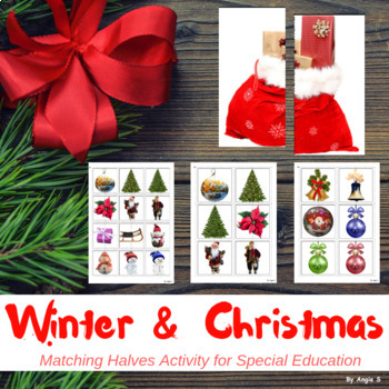 Winter and Christmas Matching Halves Activity for Autism