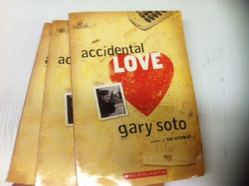 """""""Accidental Love"""" books, by Gary Soto - Literature Circle Set"""
