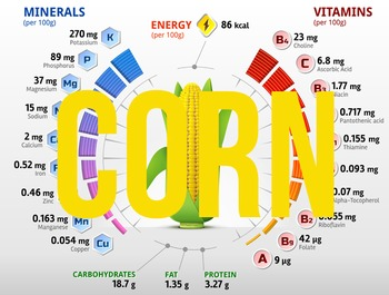 (Corn) Nutritional information & percentage composition charts
