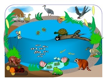 """""""In the Small, Small Pond"""" for Autism"""