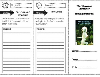 """""""Mangrove Wilderness"""" Comprehension Trifold (Storytown Lesson 24)"""