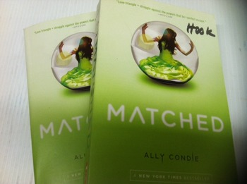"""Matched"" books, by Ally Condle - Literature Circle Set"