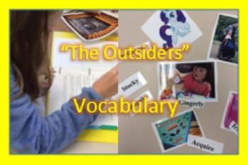 """The Outsiders"" text based vocabulary; enrichment; assessm"