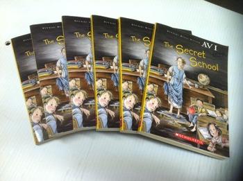 """The Secret School"" books, by Avi - Literature Circle Set"