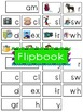 -am Word Family Flipbook, Word Wall Cards and Data Trackin