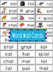 -at Word Family Flipbook, Word Wall Cards and Data Trackin