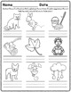 -op Word Family Worksheets