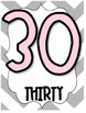 0-100 Classroom Number Chart Posters