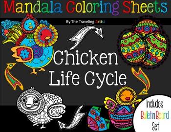 Chicken life cycle Mandala Coloring & Bulletin Board Set