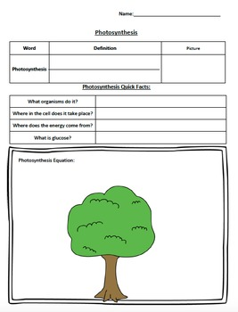 1-Day lesson Introduction to Photosynthesis