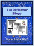 1 to 20 Winter Bingo
