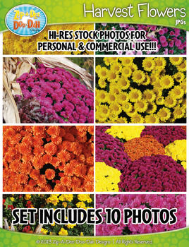 10 Harvest Flowers Stock Photos Pack — Includes Commercial