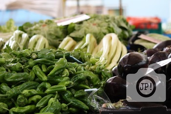 10 - VEGETABLES - celery, eggplant, peppers [By Just Photos!]