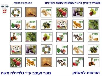 11 Memory Game for Sha'vou-ot-Shivat Haminim photo to phot