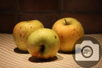 12 - APPLES [By Just Photos!]