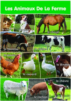 12 Farm Animals Poster- A3 size - French Version.