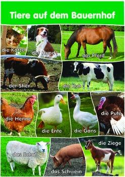 12 Farm Animals Poster- A3 size - German Version.