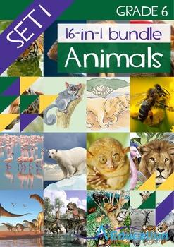 16-IN-1 BUNDLE- Animals (Set 1) – Grade 6