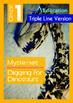 16-IN-1 BUNDLE - Mysteries (Set 1) Grade 1 ('Triple-Track