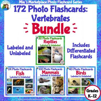 172 Animal Photo Flashcards Bundle: Vertebrates