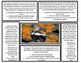 1st Grade Reading Comprehension Lion and Skunk Articles