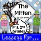 1st and 2nd Grades ~Bundled Lessons for Popular Books~ Com