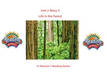 "1st grade  story 2.5 ""Life in the Forest"" high frequency &"