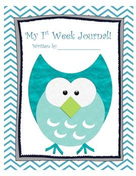 1st week journal