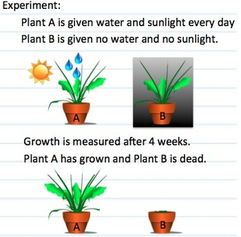 2 Column Notes on Scientific Method - variables, hypothesi