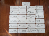 20 Laminated Zodiac Constellations Flash Cards.   Astronom