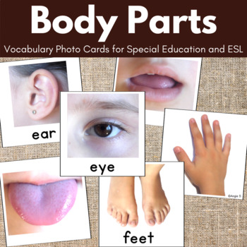 BODY PARTS Vocabulary Photo Cards for Autism, Special Ed,