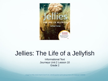 2nd Grade Journeys Unit 2 Lesson 10 Jellies: The Life of A