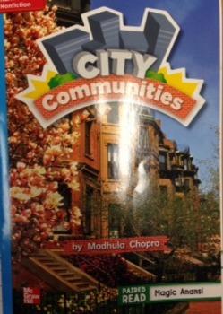 2nd Grade Wonders Unit 3 Week 3 On Level Response- City Co