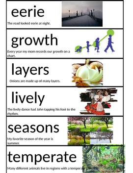2nd Grade Wonders Unit 4 Week 1 Vocabulary Picture cards w