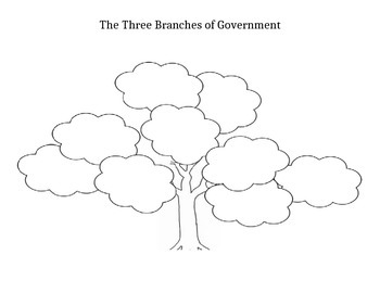 3 Branches of Government Tree