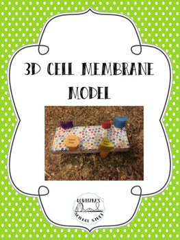 3D Model of the Cell Membrane