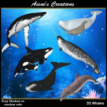 3D Whales & Dolphins Graphics Pack