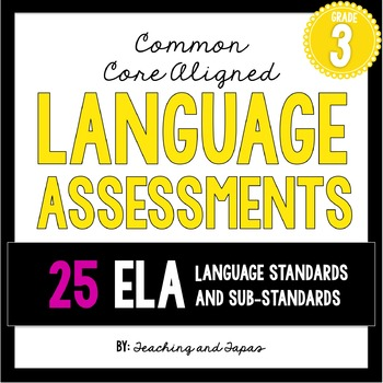 3rd Grade Common Core Language Assessment