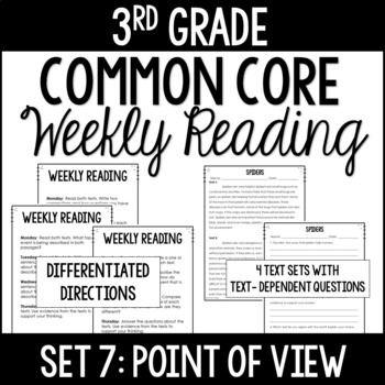 3rd Grade Common Core Weekly Reading Review {Set 7: Point