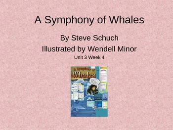 3rd Grade Reading Street Symphony of Whales Vocab Power Point