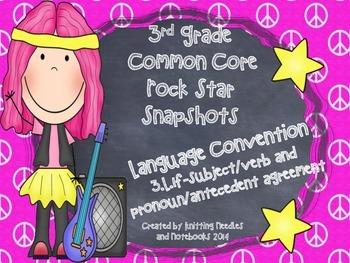 3rd Grade Rock Star Snapshots 3.L.1f: Subject/Verb ,Pronou