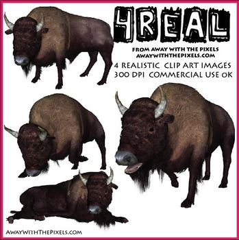 4 Real! 4 Realistic Bison Clip Art Images from Away With T