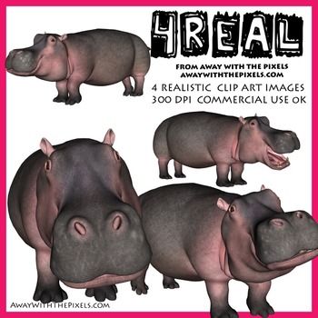4 Real! 4 Realistic Hippo Clip Art Images - Hippo Clipart