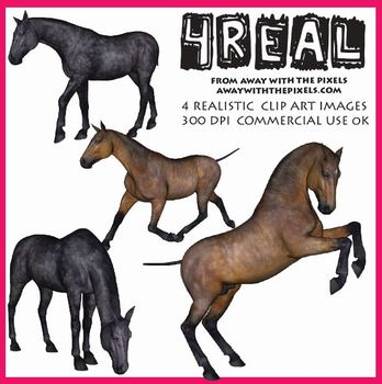4 Real! 4 Realistic Horse Clip Art Images from Away With T