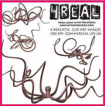 4 Real! 4 Realistic Octopus Clip Art Images - Large High Q
