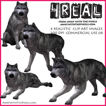4 Real! 4 Realistic Wolf Clip Art Images